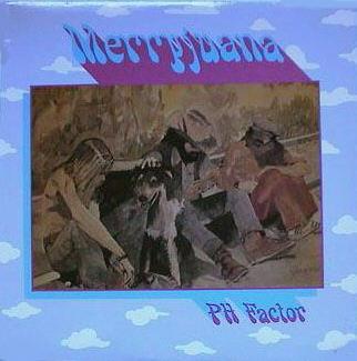 PH Phactor Jug Band - Merryjuana