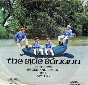 The Blue Banana - Spicks And Specks