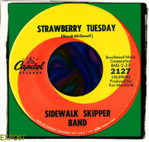 Strawberry Tuesday
