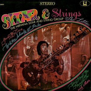 The Nirvana Sitar And String Group